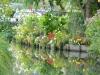 10 les hortillonnages (3)